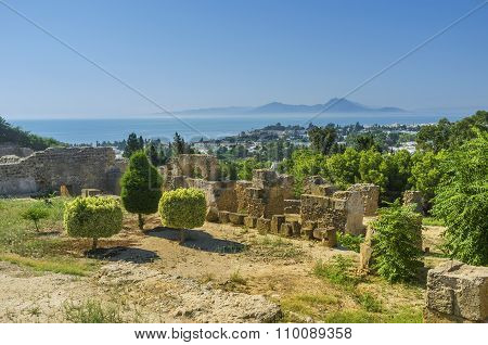 The Hills Of Carthage