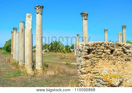 The Ancient Columns