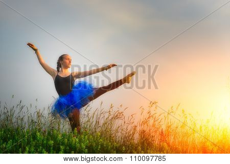 Toung beautiful ballerina dancing outdoors in a flowery meadow at sunset