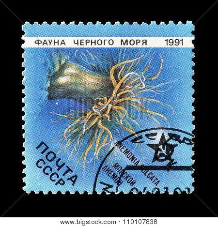 Soviet Union 1991