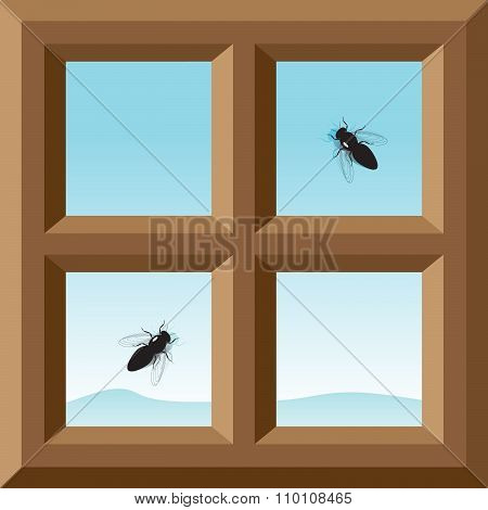 window and flies