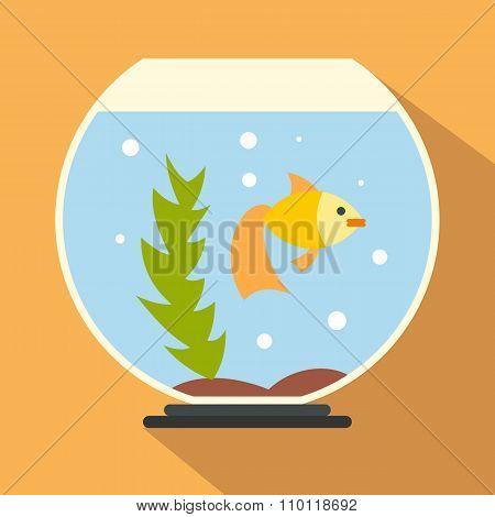 Aquarium flat icon