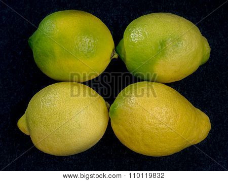 Four Ripe Yellow Lemons In Rows
