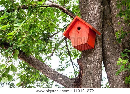 Red Birdhouse Hanging From A Tree