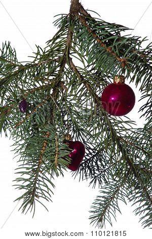 Christmas Toys On The Christmas Tree Modern Branch.