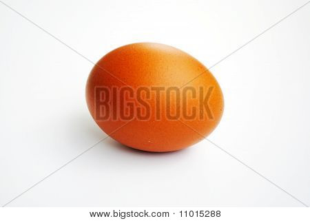 The Chicken Egg. The Egg Insulated On White Background.