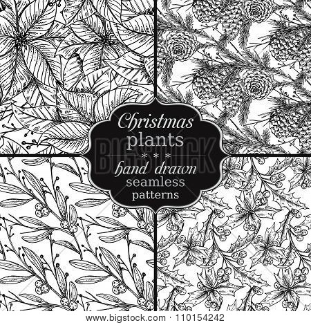 Set Of Four Vector Seamless Patterns With Hand Drawn Winter Plant