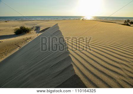 Deserted coast.
