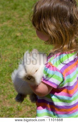 A Pet Bunny
