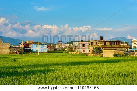 Rice fields, colourful houses and the mountains in the background, Pokhara, Nepal