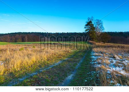 Landscape Of Fields At Late Autumn Or Winter