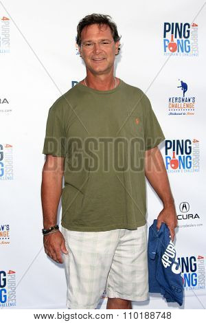 LOS ANGELES - JUL 30:  Don Mattingly at the Clayton Kershaw's 3rd Annual Ping Pong 4 Purpose at the Dodger Stadium on July 30, 2015in Los Angeles, CA