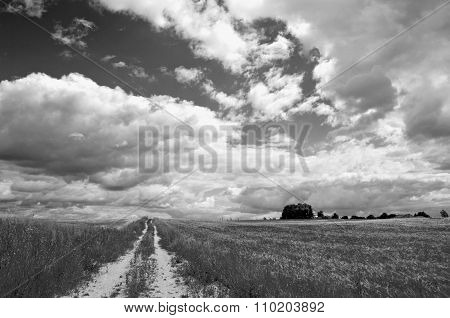 Black And White Rural Landscape With Road And Clouds
