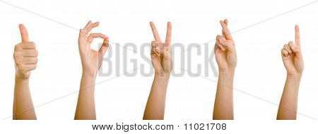 Helping Hand Thumbs Up Positiv Sign Symbol