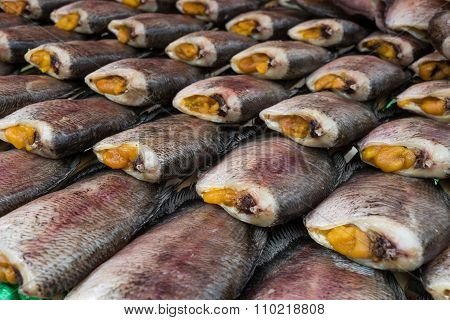 Trichogaster pectoralis fish dried