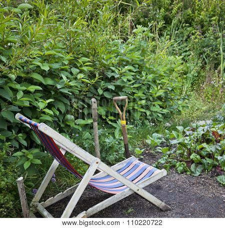 Chair In A Home Vegetable Garden