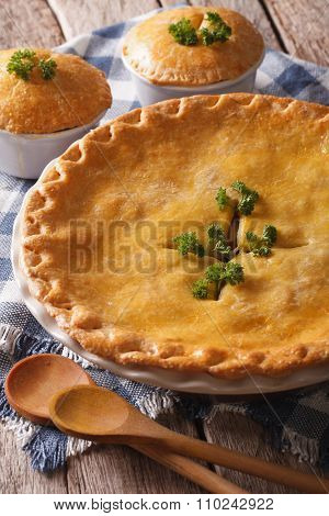 Hot Delicious Chicken Pot Pie In The Baking Dish Close Up. Vertical