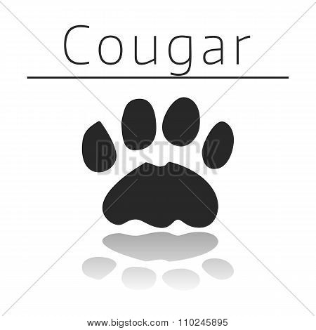 Cougar animal track