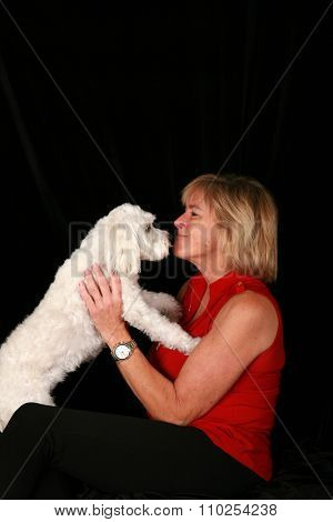A beautiful woman holds and loves up her beautiful white pure breed Maltese - Bichon dog. Shot in studio against a black velvet background with studio lights. Room for your text above her head.