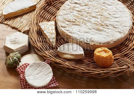 Selection Of Soft Cheeses Viewed From Above
