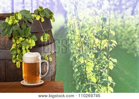 Glass Of Beer With Hops