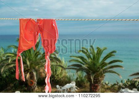 Bittersweet Orange Woman Swimsuit