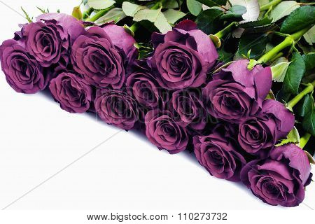 Bouquet Of Purple Roses - Isolated On White