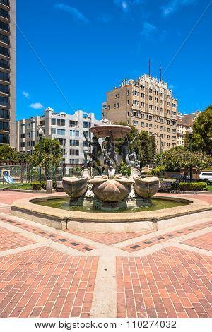 The Fountain of Tortoises in the Huntington Park, San Francisco