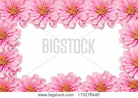 Zinnia Flowers Border Background