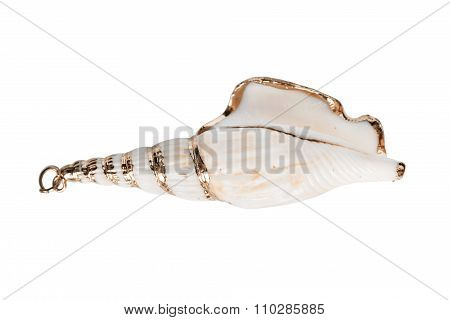 Gilded Seashell