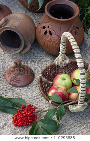 a basket of apples and a branch of elderberry