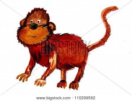 Beautiful Brown Monkey