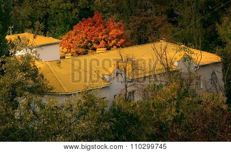 house with yellow roof