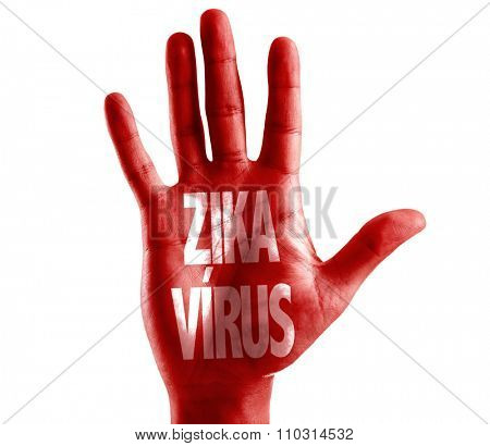 Zika Virus (in Portuguese) written on hand isolated on white background