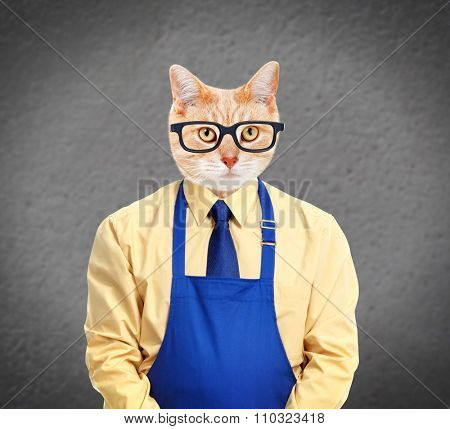 Ginger cat worker over gray wall background.