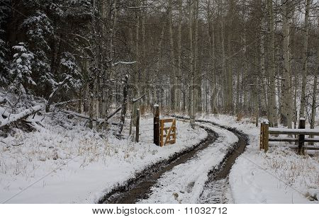 Snowy Gravel Road