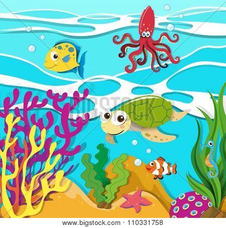 Sea animals swimming in the ocean illustration