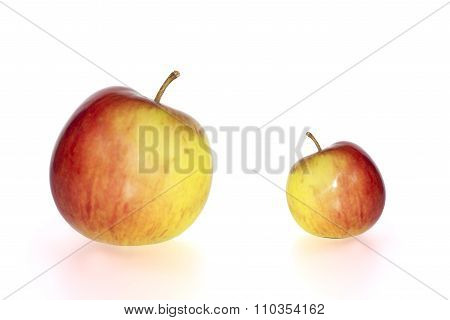 Big And Small Juicy Apples