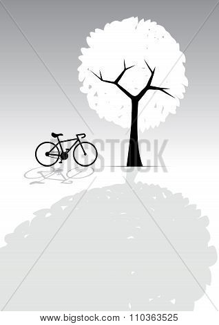 Bicycle And Tree, Light And Shadow, Greyscale