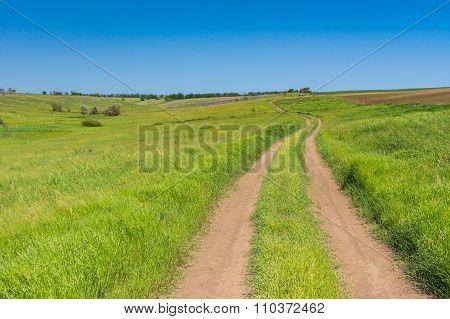 Earth road in wild Ukrainian steppe
