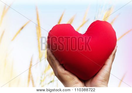 Isolated Two Hands Gently Raise And Hold Red Heart With Love And Respect With Background Of Sky