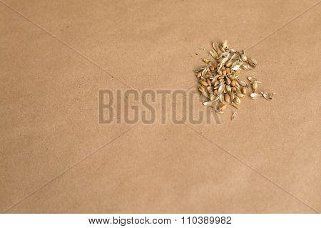 Grains Of Oats.