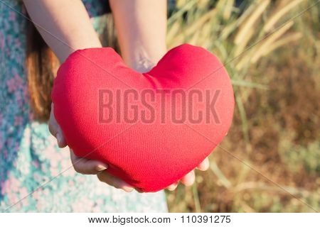Two Hands Gently Raise And Hold Red Heart With Love And Respect With Background Of Nature