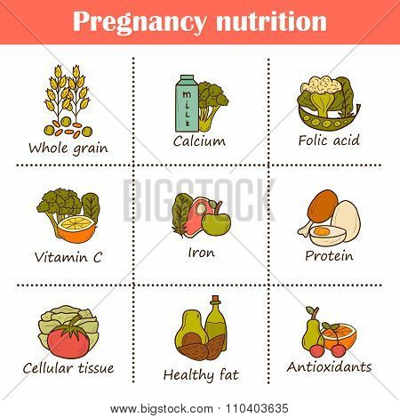 Pregnancy nutrition objects