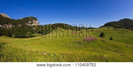 Donje Bare In Sutjeska National Park