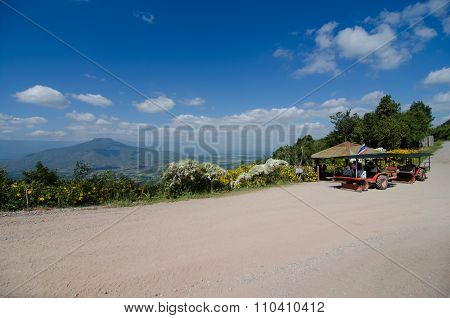 Traveler And Tractor Stag At Mt. Fuji In Loei, Thailand