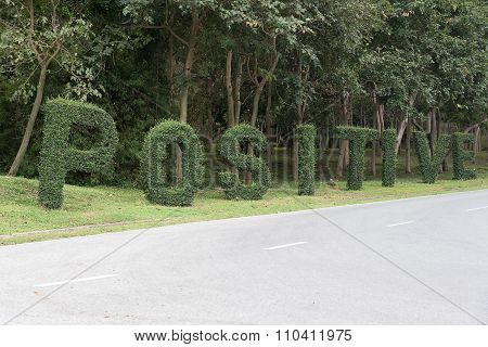 Positive Text From Trees Beside The Road