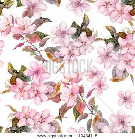 Pink fruit - apple, cherry, sakura - flowers. Seamless floral template. Aquarelle on white backgroun