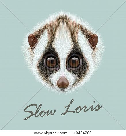 Vector Illustrated Portrait Of Slow Loris