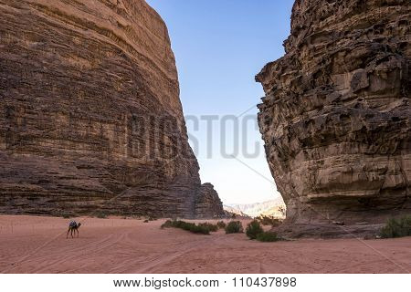 Lawrence of Arabia valley in Wadi Rum desert, Jordan.